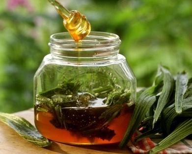 Medical Grade Manuka Honey